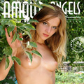 amour angels teens